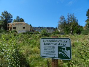 Enviro Sensitive Area